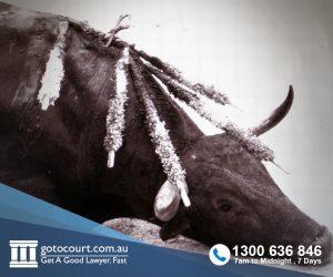 Cruelty to Animals (WA)